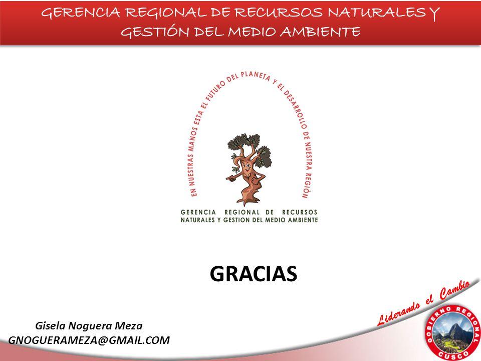 Liderando el Cambio GRACIAS Gisela Noguera Meza GNOGUERAMEZA@GMAIL.COM