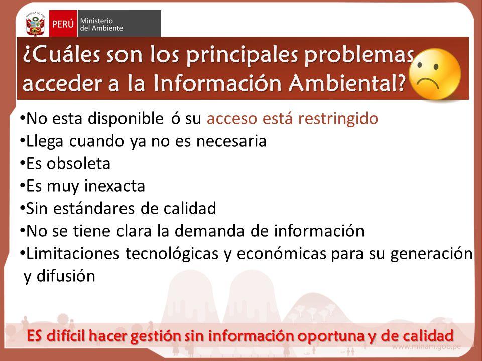 ¿Cuáles son los principales problemas acceder a la Información Ambiental.