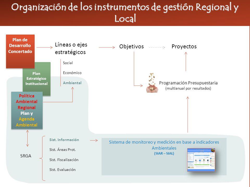 Líneas o ejes estratégicos ObjetivosProyectos Social Económico Ambiental Política Ambiental Regional SRGA Sist.
