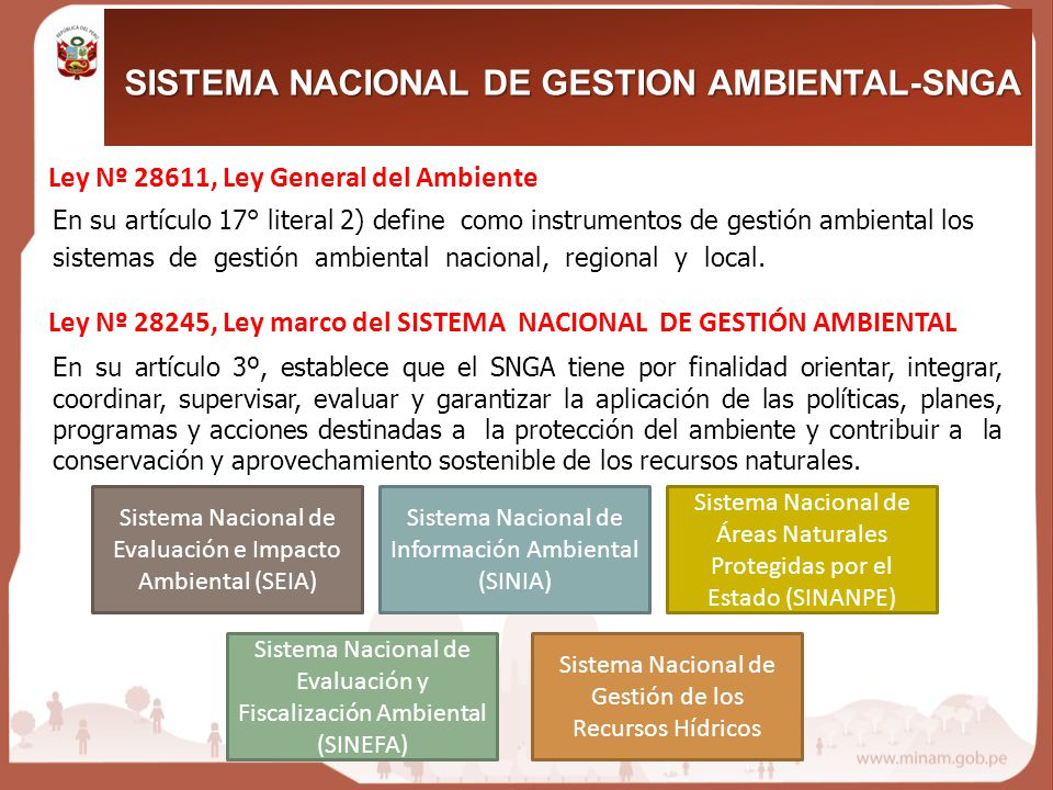 Ley Nº 28611, Ley General del Ambiente En su artículo 17° literal 2) define como instrumentos de gestión ambiental los sistemas de gestión ambiental nacional, regional y local.