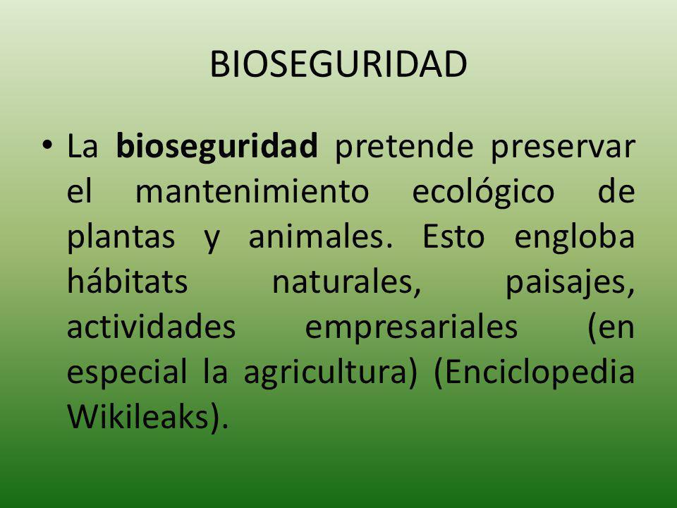 El protocolo de Bioseguridad establece las reglas para el movimiento transfronterizo de organismos vivos modificados genéticamente que puedan afectar en forma negativa la conservación y utilización sostenible de la biodiversidad.