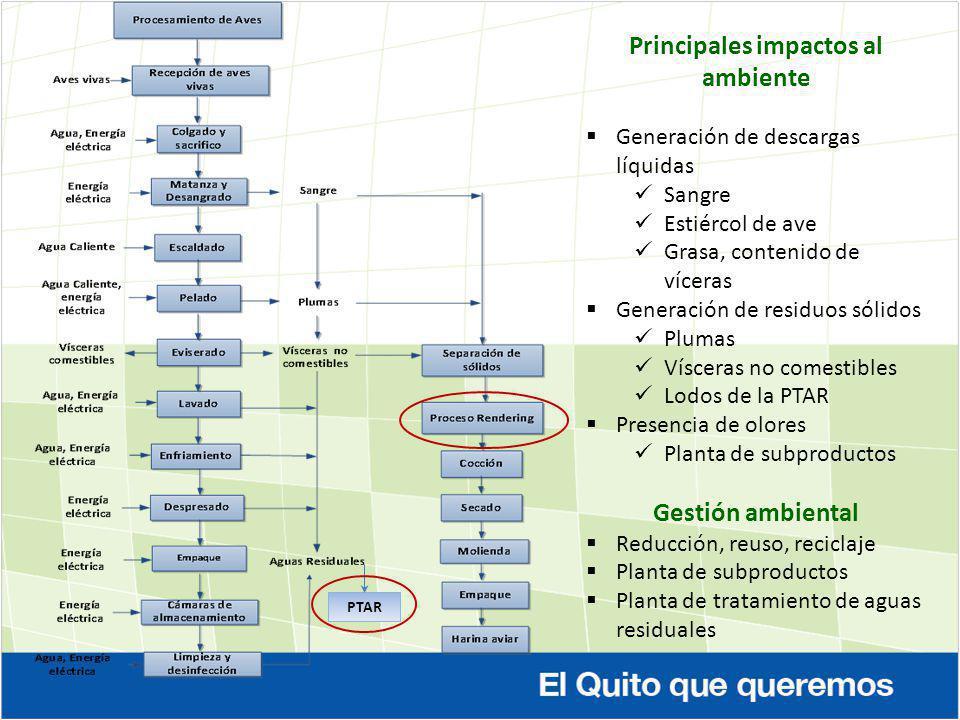 Principales impactos al ambiente Generación de descargas líquidas Sangre Estiércol de ave Grasa, contenido de víceras Generación de residuos sólidos P