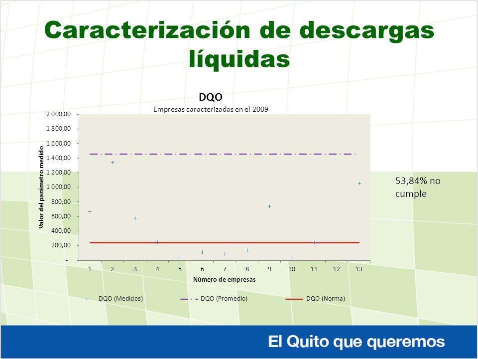 Caracterización de descargas líquidas 53,84% no cumple
