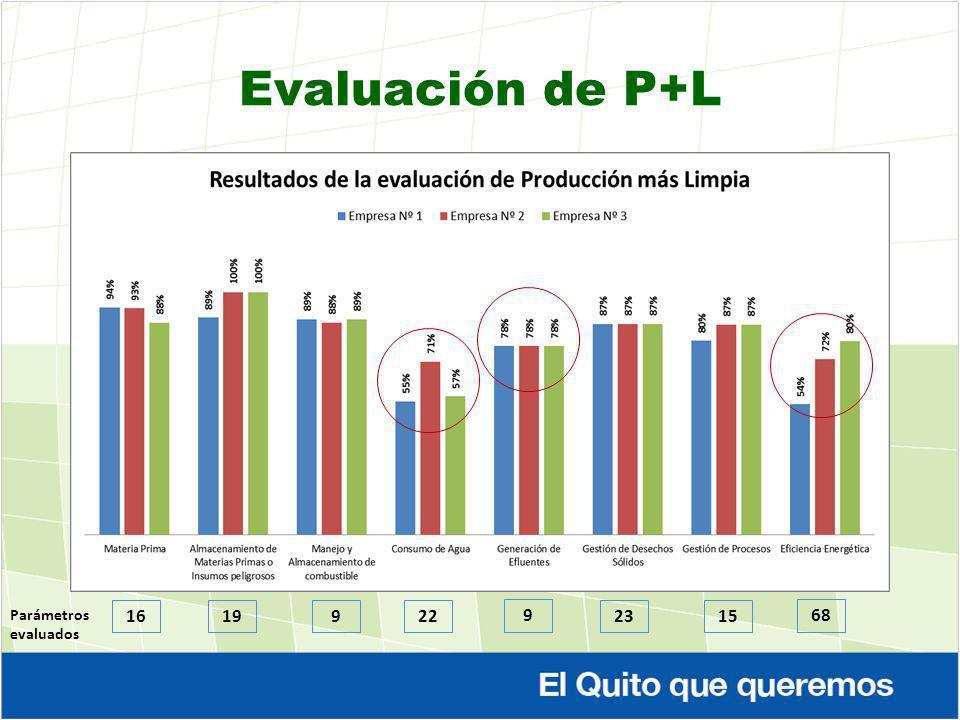 Evaluación de P+L 16 Parámetros evaluados 199 22 9 2315 68