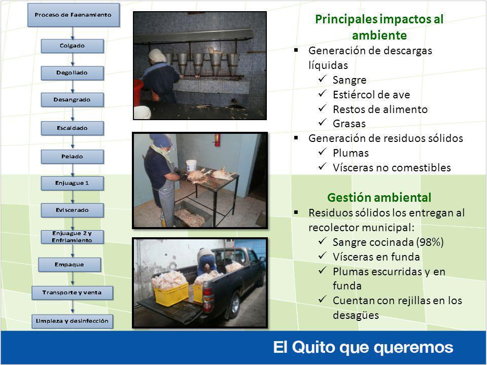 Principales impactos al ambiente Generación de descargas líquidas Sangre Estiércol de ave Restos de alimento Grasas Generación de residuos sólidos Plu