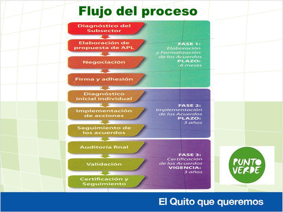 Flujo del proceso
