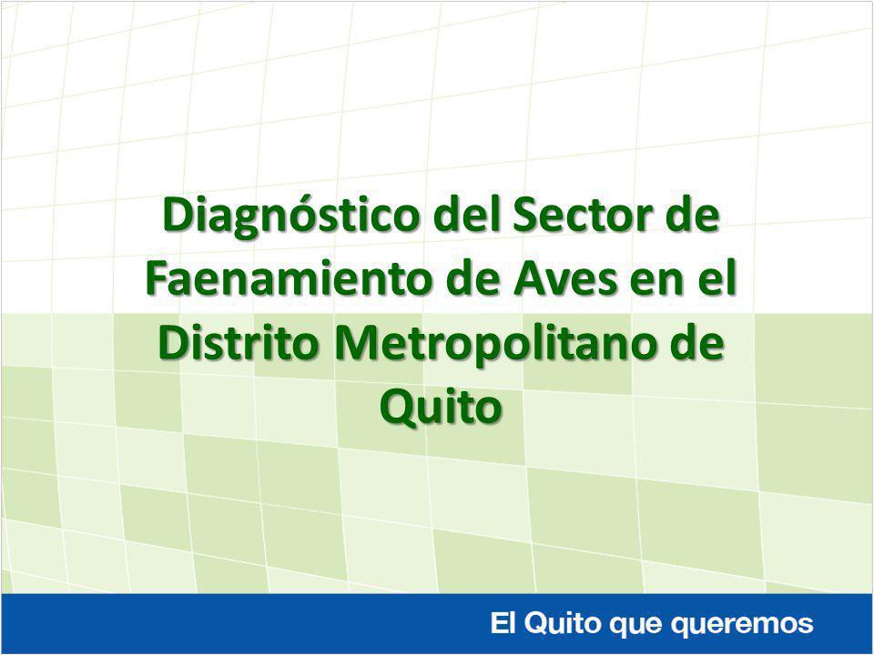 Diagnóstico del Sector de Faenamiento de Aves en el Distrito Metropolitano de Quito