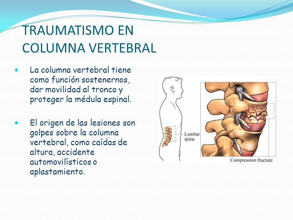 TRAUMATISMO EN COLUMNA VERTEBRAL La columna vertebral tiene como función sostenernos, dar movilidad al tronco y proteger la médula espinal. El origen