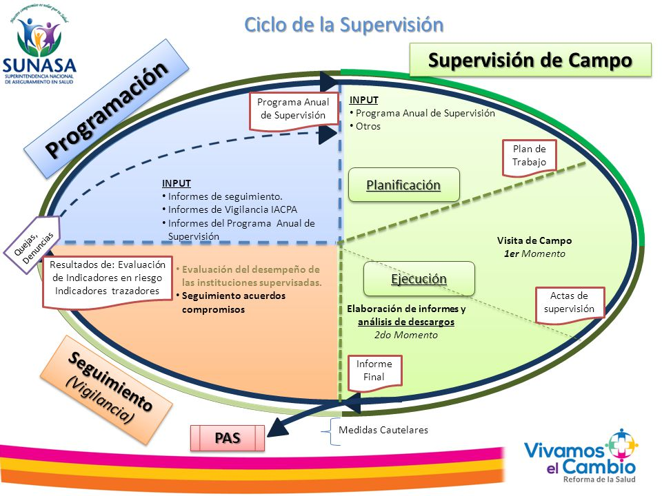 ProgramaciónProgramación Elaboración de informes y análisis de descargos 2do Momento Supervisión de Campo INPUT Programa Anual de Supervisión Otros IN