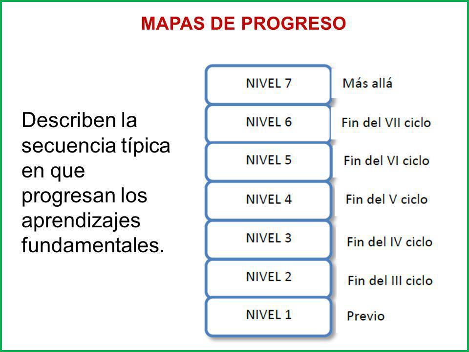 Presentan un menor número de competencias y capacidades los cuales han sido elaborados a partir del DCN y los mapas de progreso.