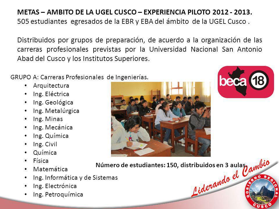 Liderando el Cambio METAS – AMBITO DE LA UGEL CUSCO – EXPERIENCIA PILOTO 2012 - 2013. 505 estudiantes egresados de la EBR y EBA del ámbito de la UGEL