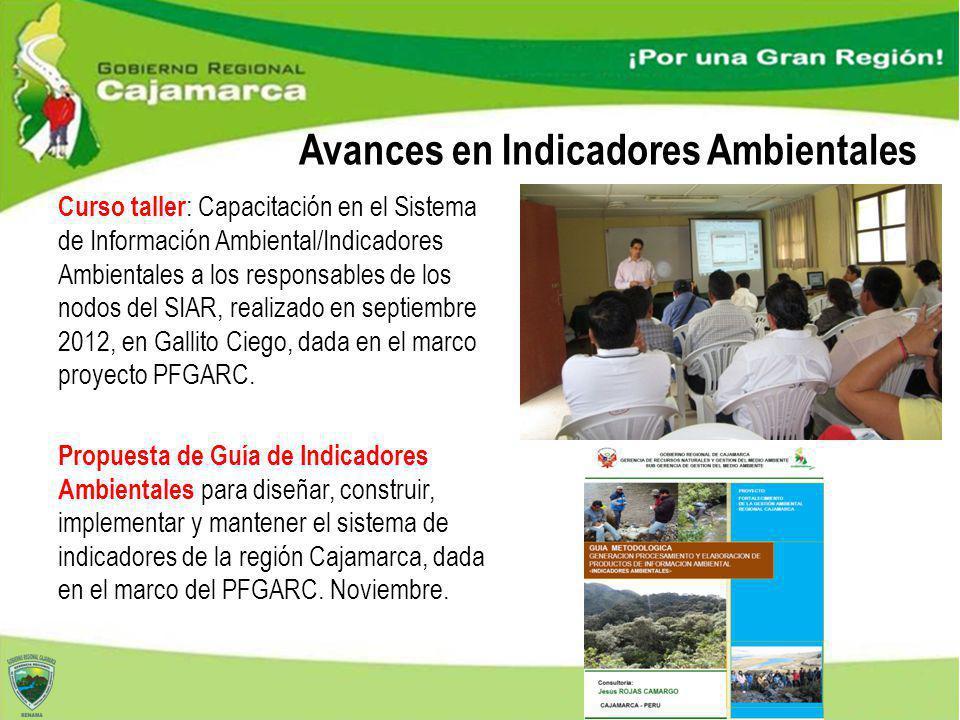 Curso taller : Capacitación en el Sistema de Información Ambiental/Indicadores Ambientales a los responsables de los nodos del SIAR, realizado en sept