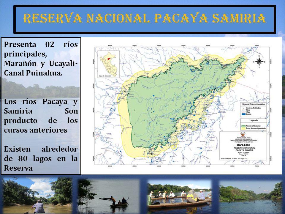 Presenta 02 ríos principales, Marañón y Ucayali- Canal Puinahua. Los ríos Pacaya y Samiria Son producto de los cursos anteriores Existen alrededor de
