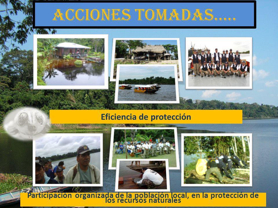 Acciones tomadas….. Eficiencia de protección Participación organizada de la población local, en la protección de los recursos naturales