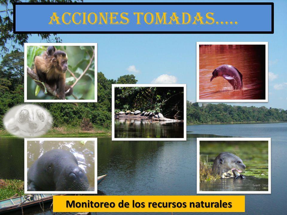 Monitoreo de los recursos naturales Acciones tomadas…..
