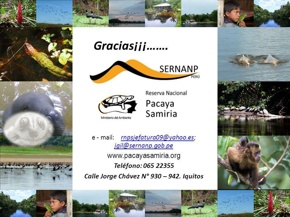 e - mail:rnpsjefatura09@yahoo.es; jgil@sernanp.gob.pernpsjefatura09@yahoo.es jgil@sernanp.gob.pe www.pacayasamiria.org Teléfono: 065 22355 Calle Jorge