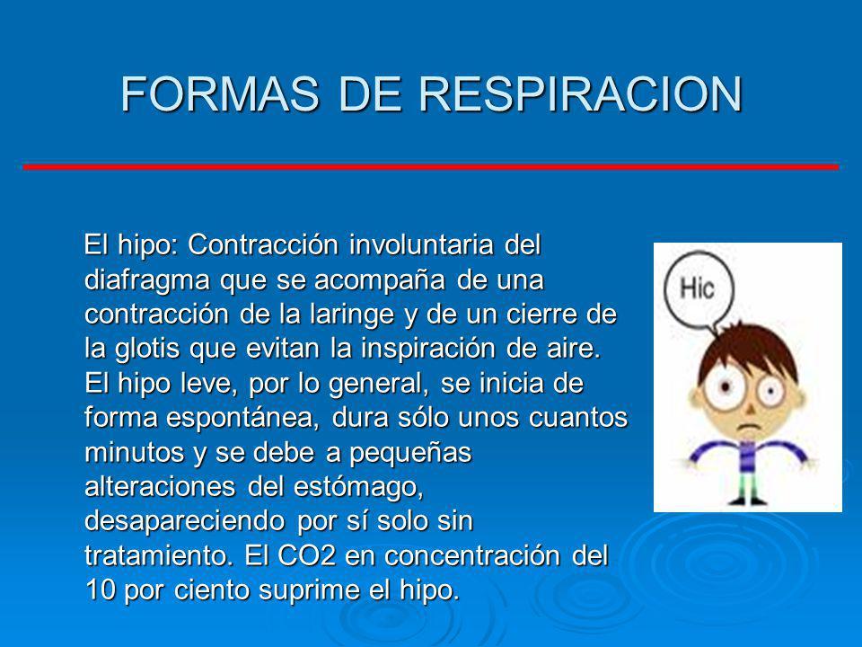 FORMAS DE RESPIRACION El hipo: Contracción involuntaria del diafragma que se acompaña de una contracción de la laringe y de un cierre de la glotis que
