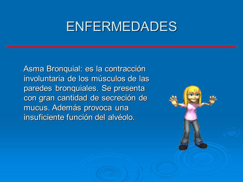 ENFERMEDADES Asma Bronquial: es la contracción involuntaria de los músculos de las paredes bronquiales. Se presenta con gran cantidad de secreción de