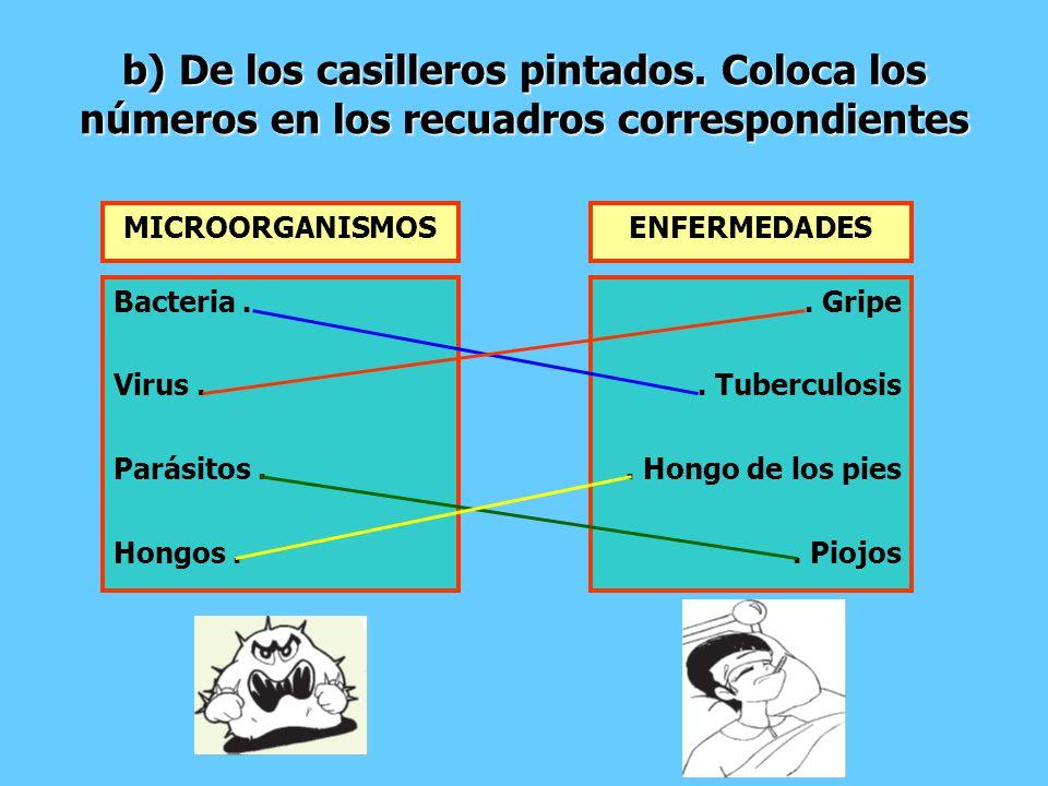 b) De los casilleros pintados. Coloca los números en los recuadros correspondientes MICROORGANISMOS Bacteria. Virus. Parásitos. Hongos. ENFERMEDADES.