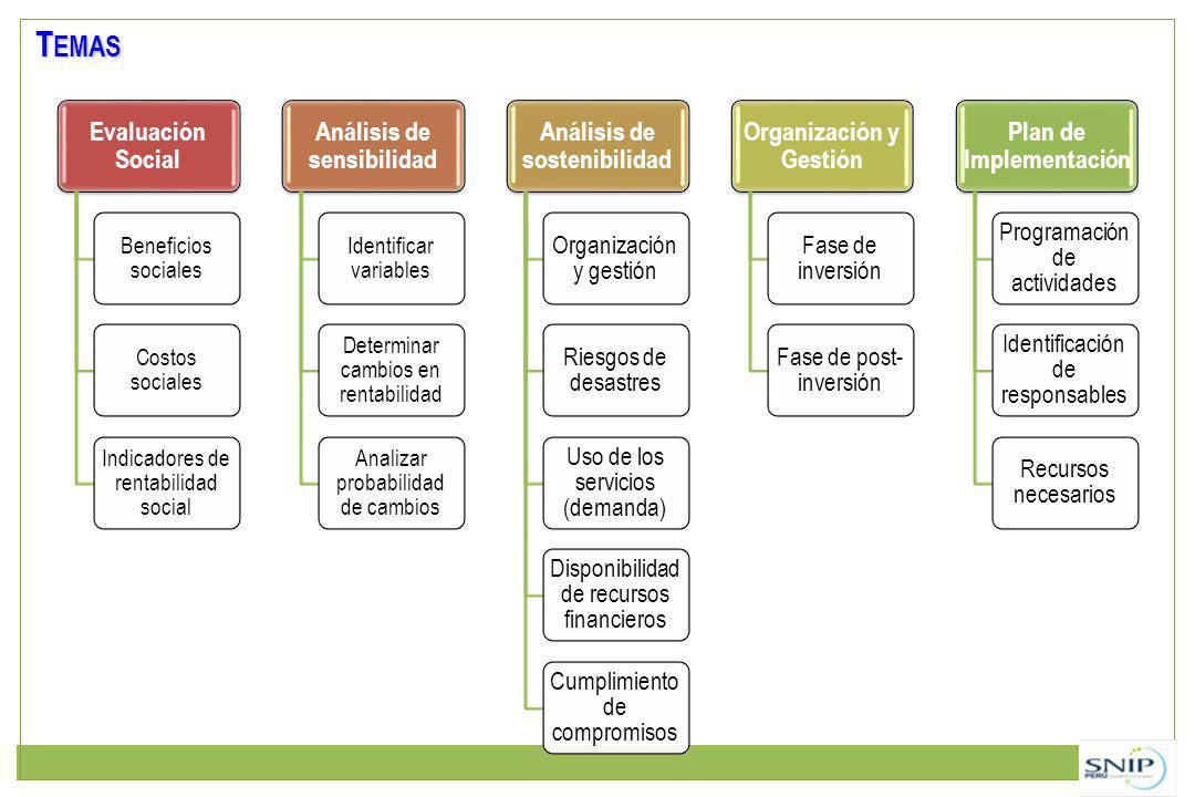 Evaluación Social Beneficios sociales Costos sociales Indicadores de rentabilidad social Análisis de sensibilidad Identificar variables Determinar cambios en rentabilidad Analizar probabilidad de cambios Análisis de sostenibilidad Organización y gestión Riesgos de desastres Uso de los servicios (demanda) Disponibilidad de recursos financieros Cumplimiento de compromisos Organización y Gestión Fase de inversión Fase de post- inversión Plan de Implementación Programación de actividades Identificación de responsables Recursos necesarios T EMAS