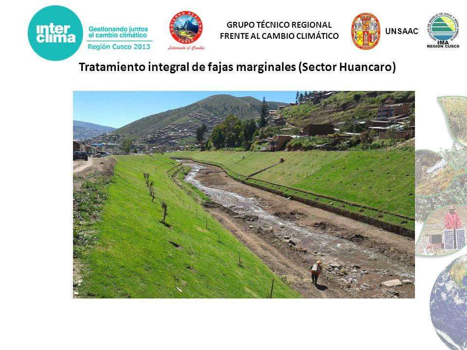 GRUPO TÉCNICO REGIONAL FRENTE AL CAMBIO CLIMÁTICO Tratamiento integral de fajas marginales (Sector Huancaro) UNSAAC