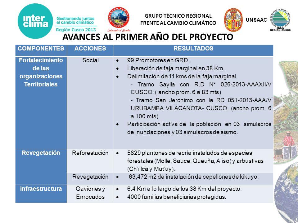 GRUPO TÉCNICO REGIONAL FRENTE AL CAMBIO CLIMÁTICO COMPONENTESACCIONESRESULTADOS Fortalecimiento de las organizaciones Territoriales Social 99 Promotor