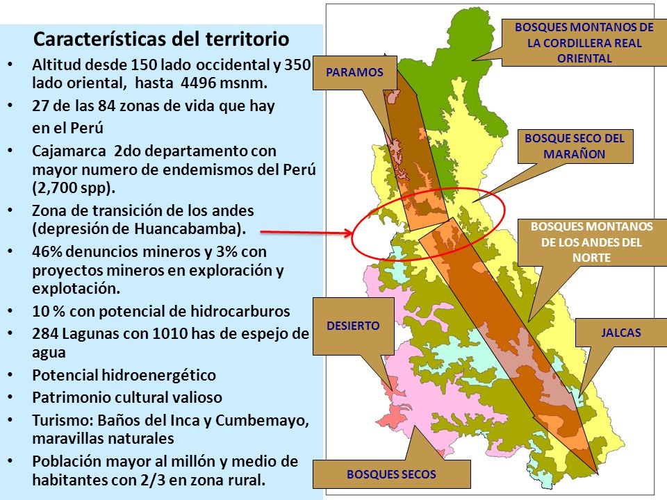 Características del territorio Altitud desde 150 lado occidental y 350 lado oriental, hasta 4496 msnm. 27 de las 84 zonas de vida que hay en el Perú C