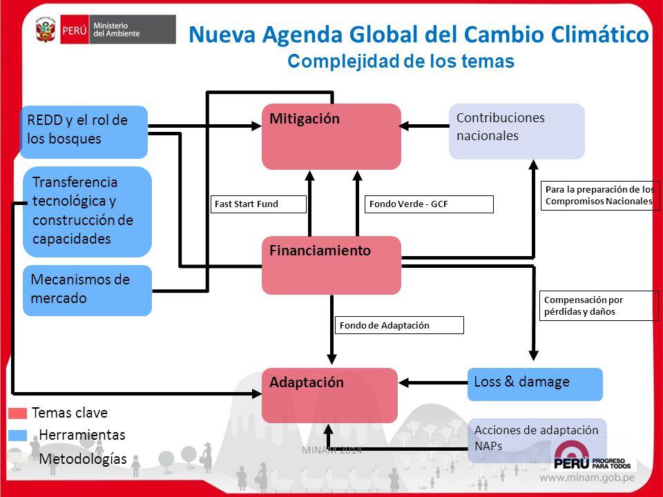 Complejidad de los temas Financiamiento Transferencia tecnológica y construcción de capacidades Acciones de adaptación NAPs Loss & damage Adaptación R