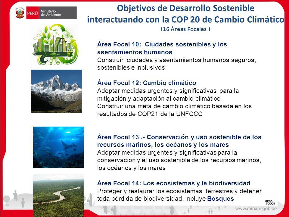 Objetivos de Desarrollo Sostenible interactuando con la COP 20 de Cambio Climático (16 Áreas Focales ) Área Focal 10: Ciudades sostenibles y los asent