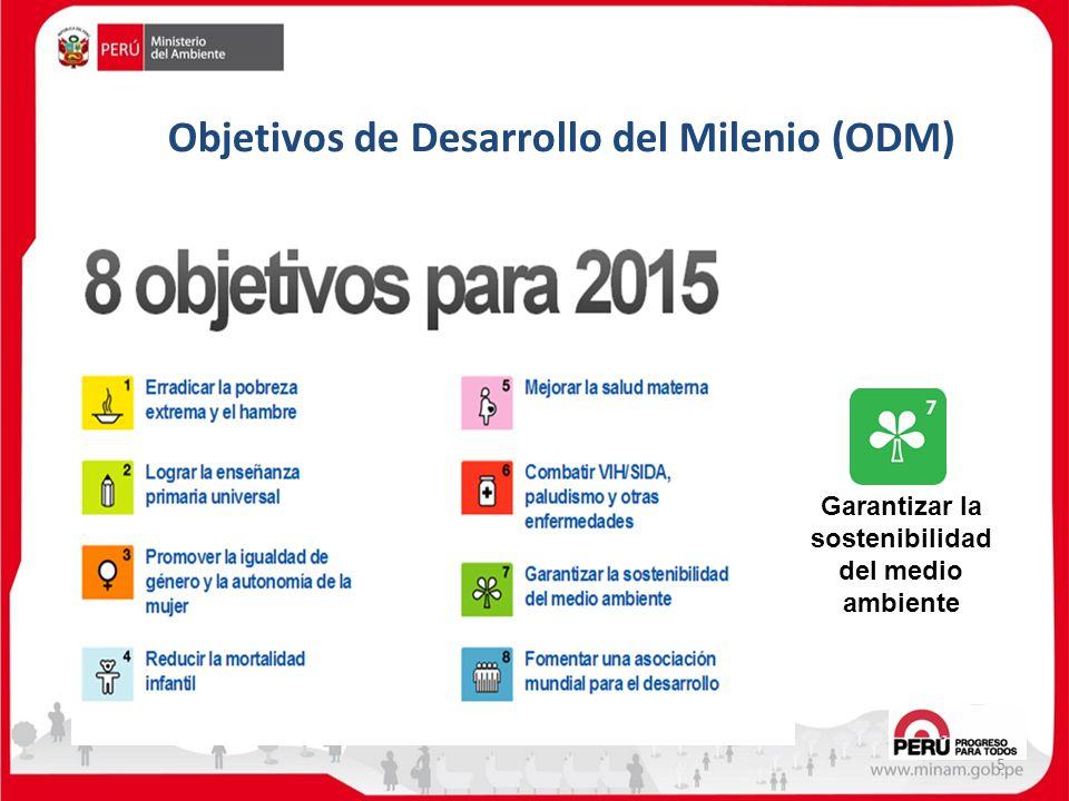Objetivos de Desarrollo del Milenio (ODM) 5 Garantizar la sostenibilidad del medio ambiente