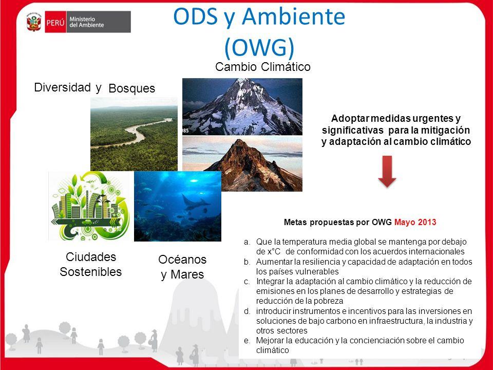 Diversidad y Bosques Cambio Climático Océanos y Mares ODS y Ambiente (OWG) Ciudades Sostenibles Adoptar medidas urgentes y significativas para la miti