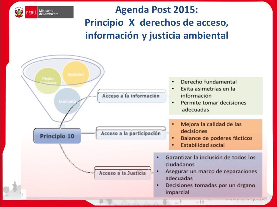 Agenda Post 2015: Principio X derechos de acceso, información y justicia ambiental