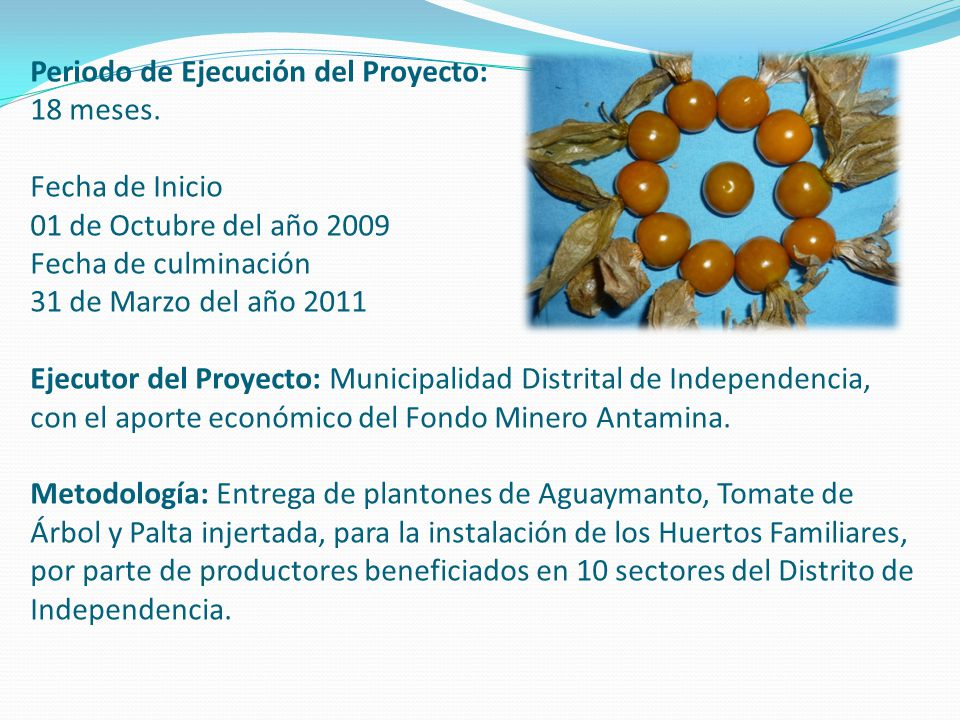 Periodo de Ejecución del Proyecto: 18 meses. Fecha de Inicio 01 de Octubre del año 2009 Fecha de culminación 31 de Marzo del año 2011 Ejecutor del Pro