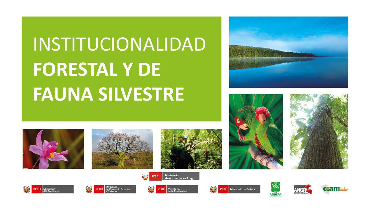 INSTITUCIONALIDAD FORESTAL Y DE FAUNA SILVESTRE Ministerio de Agricultura y Riego PER Ú