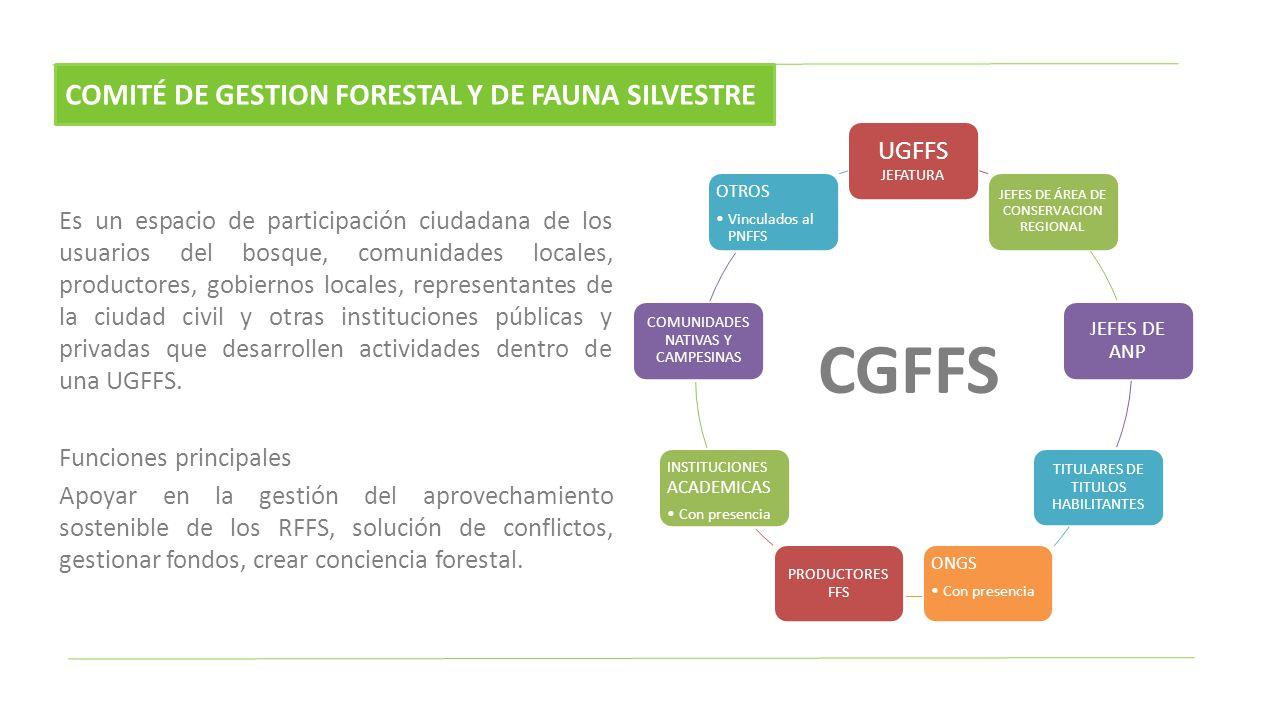 Es un espacio de participación ciudadana de los usuarios del bosque, comunidades locales, productores, gobiernos locales, representantes de la ciudad