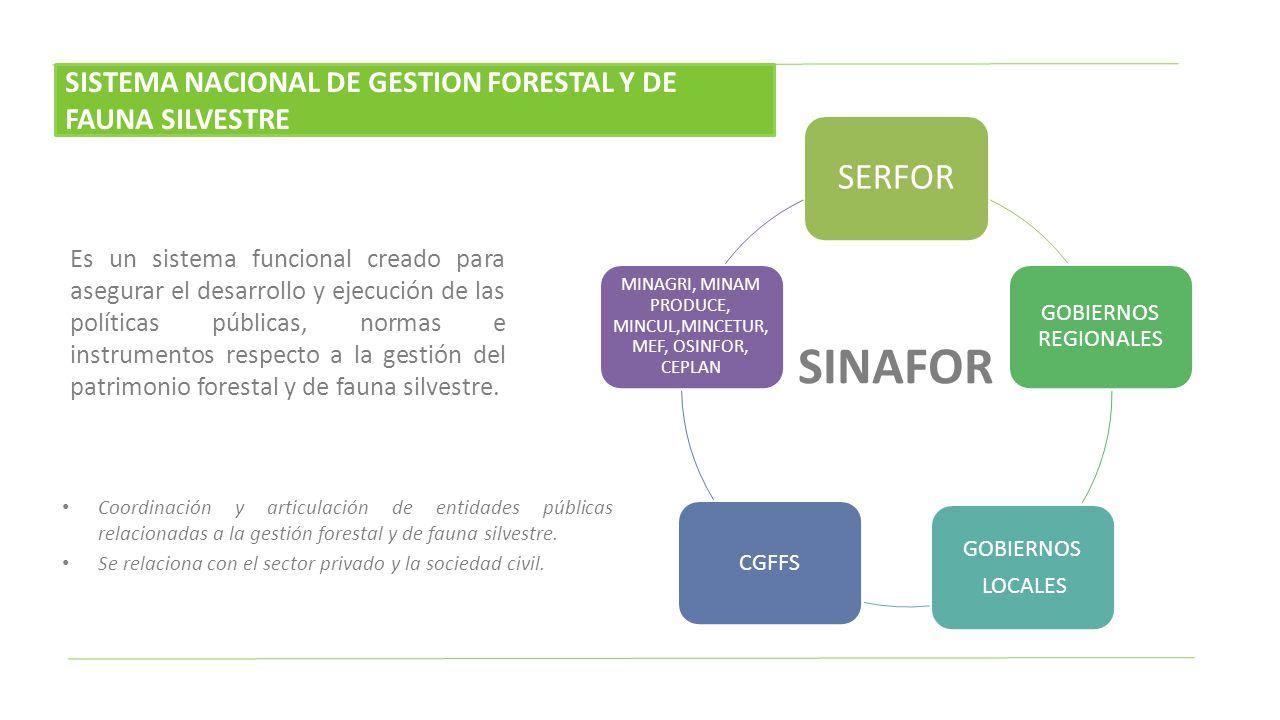 DIRECCIONES GENERALES Información y Ordenamiento Política y Competitividad Gestión Sostenible del Patrimonio Gestión del Conocimiento Dirección Ejecutiva Base de información Planifica Implementa y apoya Evalúa y retroalimenta SERFOR Consejo Directivo CONAFOR Autoridad Nacional Forestal y de Fauna Silvestre, responsable de la gestión del Patrimonio Forestal y de Fauna Silvestre de la Nación bajo un enfoque unitario y descentralizado, en el marco de la Ley.