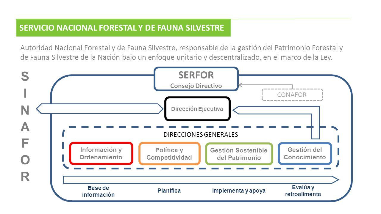 DIRECCIONES GENERALES Información y Ordenamiento Política y Competitividad Gestión Sostenible del Patrimonio Gestión del Conocimiento Dirección Ejecut