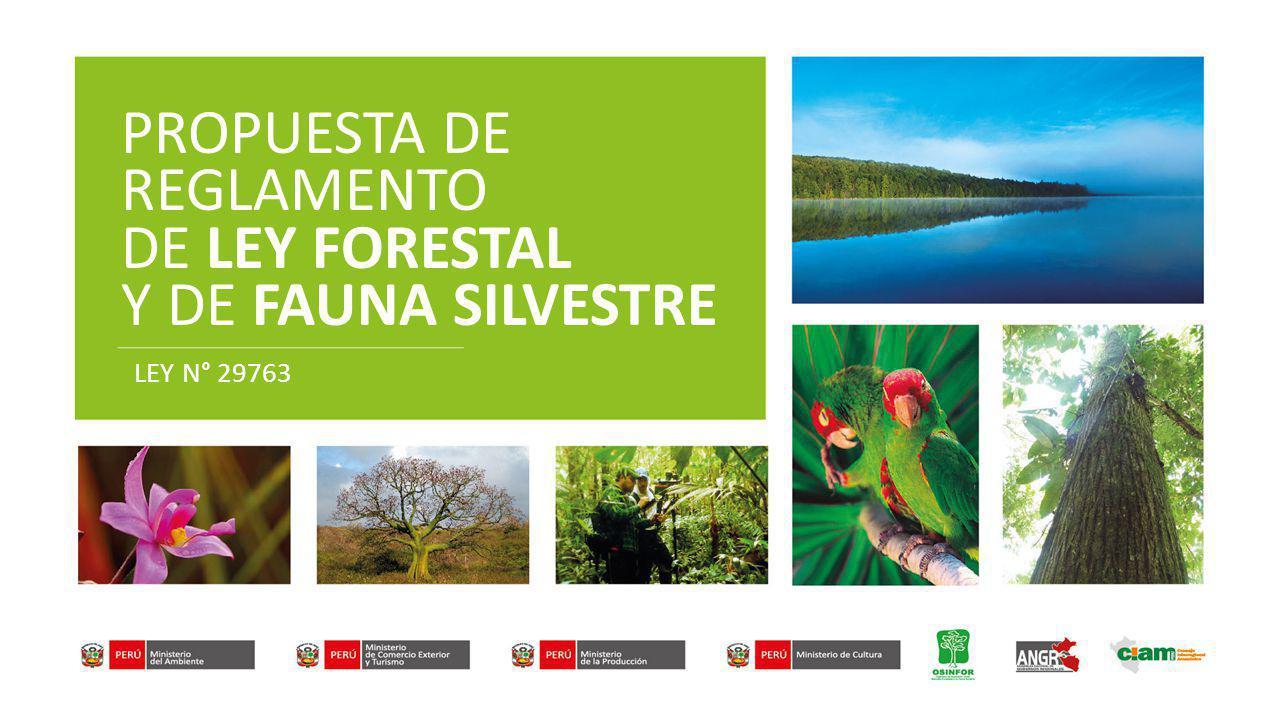 PROPUESTA DE REGLAMENTO DE LEY FORESTAL Y DE FAUNA SILVESTRE LEY N° 29763