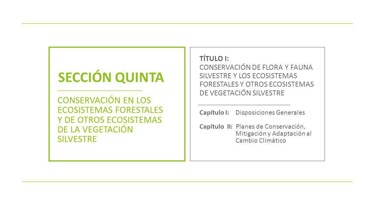 SECCIÓN QUINTA CONSERVACIÓN EN LOS ECOSISTEMAS FORESTALES Y DE OTROS ECOSISTEMAS DE LA VEGETACIÓN SILVESTRE TÍTULO I: CONSERVACIÓN DE FLORA Y FAUNA SI