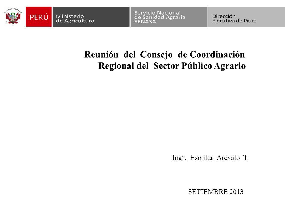 Reunión del Consejo de Coordinación Regional del Sector Público Agrario Ing°.