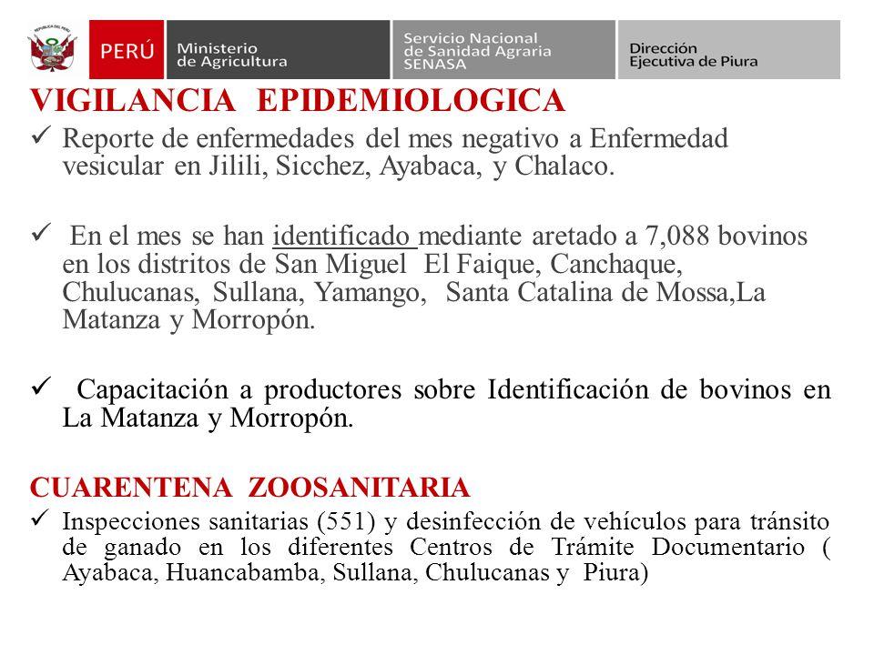 VIGILANCIA EPIDEMIOLOGICA Reporte de enfermedades del mes negativo a Enfermedad vesicular en Jilili, Sicchez, Ayabaca, y Chalaco.