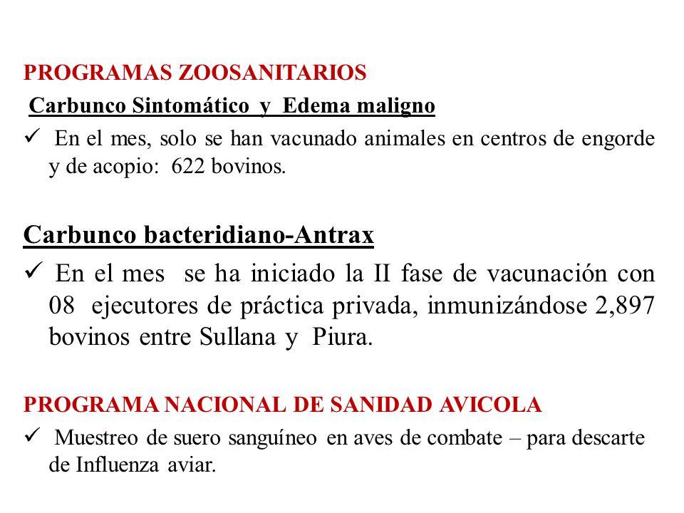 PROGRAMAS ZOOSANITARIOS Carbunco Sintomático y Edema maligno En el mes, solo se han vacunado animales en centros de engorde y de acopio: 622 bovinos.