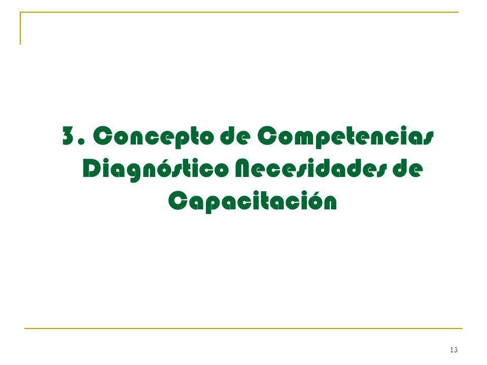 13 3. Concepto de Competencias Diagnóstico Necesidades de Capacitación