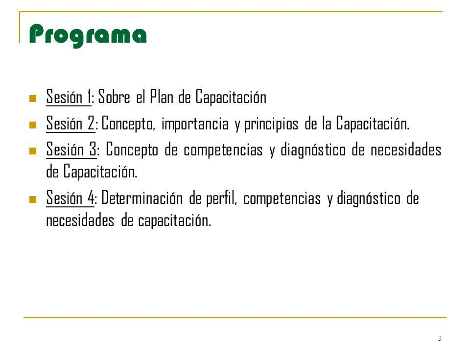 3 Programa Sesión 1: Sobre el Plan de Capacitación Sesión 2: Concepto, importancia y principios de la Capacitación. Sesión 3: Concepto de competencias