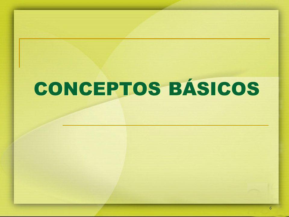 6 CONCEPTOS BÁSICOS CONCEPTOS BÁSICOS