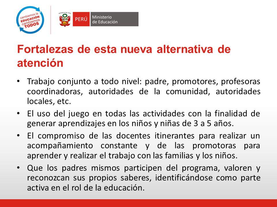 Fortalezas de esta nueva alternativa de atención Trabajo conjunto a todo nivel: padre, promotores, profesoras coordinadoras, autoridades de la comunid