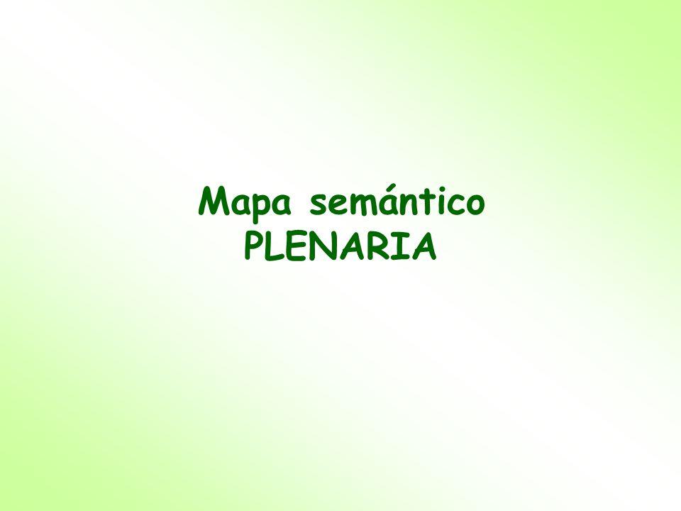 Mapa semántico PLENARIA