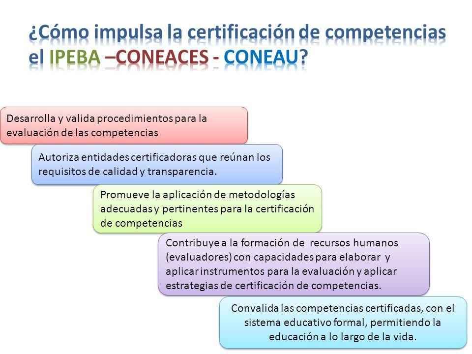 Desarrolla y valida procedimientos para la evaluación de las competencias Autoriza entidades certificadoras que reúnan los requisitos de calidad y transparencia.