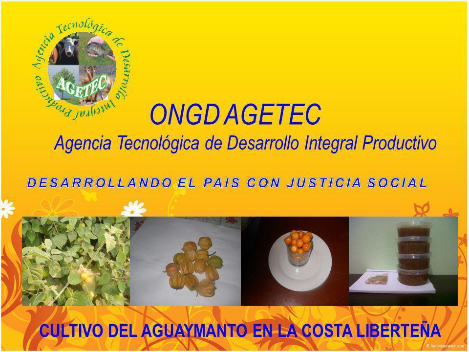 Misión Tiene como misión el de propiciar el desarrollo socio-económico de los pequeños productores agropecuarios del Perú, organizándolos en cadenas productivas, a fin de lograr una agricultura competitiva, desarrollada en términos de sostenibilidad económica, social y ambiental y en el tiempo obtengan un amplio impacto social y económico.