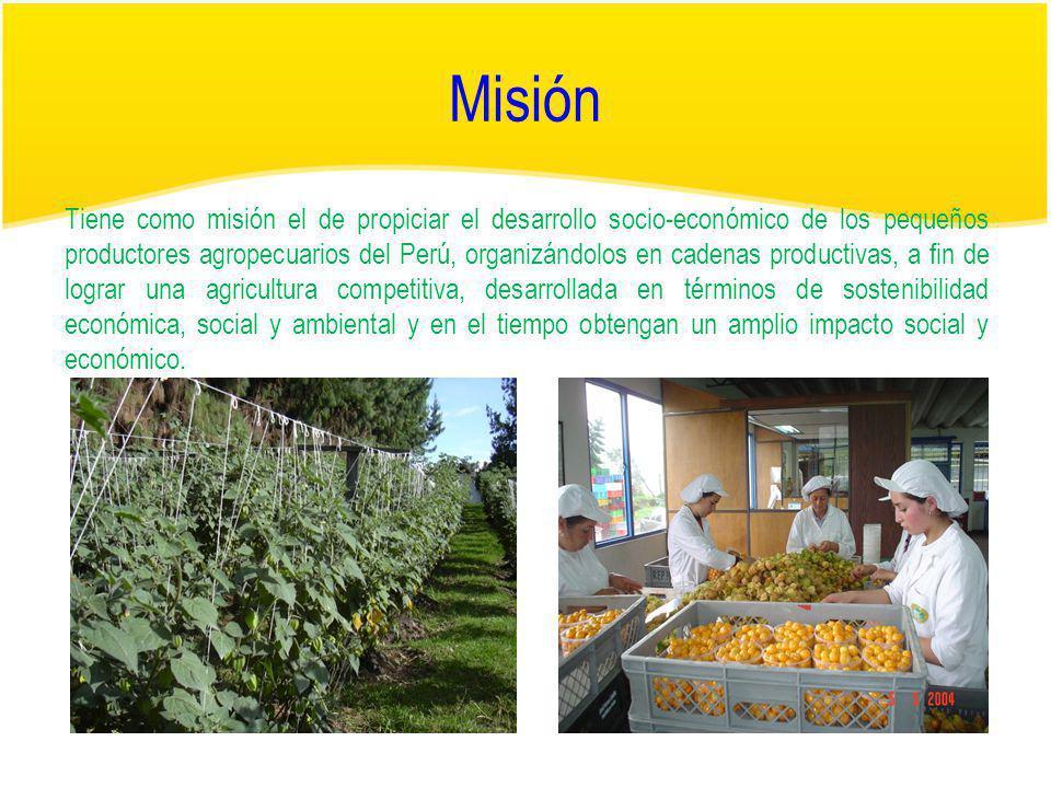 Visión Tiene como visión el de conducir, articular y dinamizar a los productores agropecuarios peruanos de los beneficios de la economía moderna, dentro de un contexto de desarrollo sostenible, acompañando al proceso de transformación de estas en las nuevas tendencias globales de competitividad, convirtiéndolos en rentables y sostenibles económica, social y ambientalmente en un entorno democrático, participativo y de igualdad de oportunidades, por lo tanto el Perú es un país líder en producción agropecuaria tanto para el mercado interno como externo sustentado en productos de calidad, orientados al mercado que generan rentabilidad para el productor.